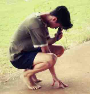 macon crouching tiger