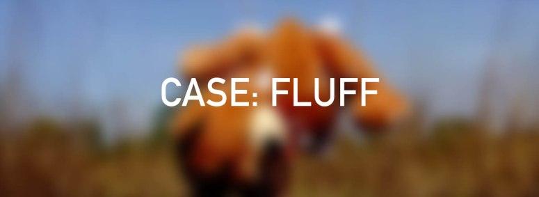 Website Latest Films CASE FLUFF